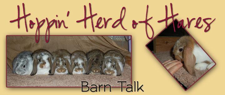 Hoppin' Herd of Hares